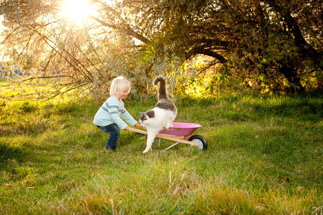Children   www.ShaunaRaesPhotography.com