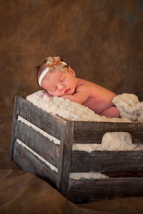 Newborn Prices